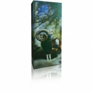 HD Diana Standard 7-500x500uj.jpg